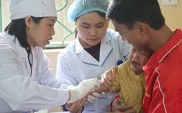 Vụ trẻ nhiễm sán lợn: 17 trường hợp nhập viện, 7 trẻ mắc nhiều loại sán