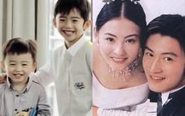 Những tin đồn  xung quanh cuộc ly hôn của Tạ Đình Phong và Trương Bá Chi