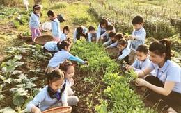 8 bài học đơn giản dạy con bảo vệ môi trường sống