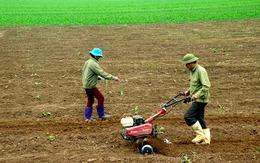 Hộ gia đình, cá nhân bị ảnh hưởng Covid-19 được giảm tiền thuê đất