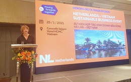 Hà Lan hỗ trợ Việt Nam phát triển ngành cây ăn quả có múi ở Đồng bằng sông Cửu Long