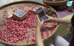 Khóa học miễn phí về kinh doanh trên sàn thương mại điện tử do Hội LHPN Việt tổ chức