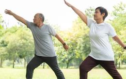 5 bài tập dưỡng sinh cho người cao tuổi giúp tăng cường sức khoẻ, tiêu trừ bệnh tật