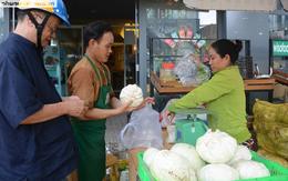 """Bắp cải, cà rốt Đà Lạt chờ người Sài Gòn """"ủng hộ dùm"""""""