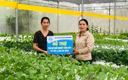 Quảng Nam: Hỗ trợ các hộ phụ nữ khởi nghiệp