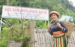 Người phụ nữ Dao đưa miến dong lên sàn giao dịch điện tử