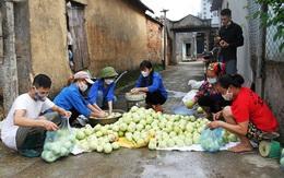 Các cấp Hội hỗ trợ tiêu thụ nông sản tại vùng dịch Bắc Giang