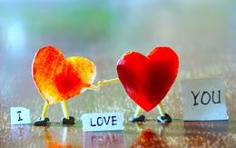 Chúng ta phải yêu bao nhiêu lần mới đủ?