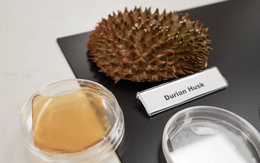 Biến vỏ sầu riêng thành băng keo dạng gel kháng khuẩn