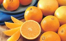 Dấu hiệu nhận biết đặc trưng của cam không hạt Navel