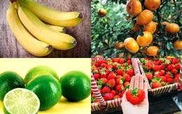 9 loại quả nên ăn trong mùa xuân