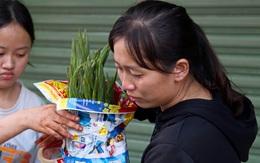 TPHCM: Hoa lay ơn nguyên bó biến thành rác, người buôn vừa bán hàng vừa rơi nước mắt