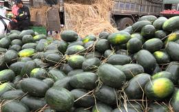 Đại sứ quán Hàn Quốc chung tay giải cứu nông sản Việt