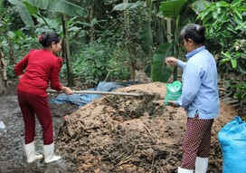Quy trình xử lý rác hữu cơ tại hộ gia đình