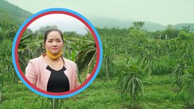 Chủ tịch hợp tác xã người Dao khát khao định danh cho sản phẩm nông nghiệp