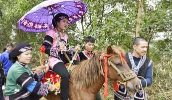 Lên vùng cao xem lễ rước dâu bằng ngựa của người Bố Y