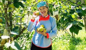 Cô gái dân tộc Giáy đam mê làm du lịch online
