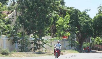 Giáo dân Giáo xứ Gò Thị chung tay bảo vệ môi trường