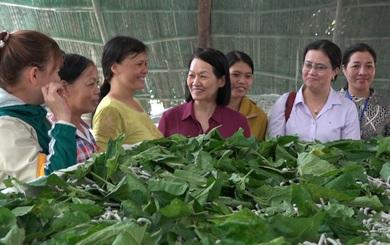 Phụ nữ Đồng Nai phát triển kinh tế hợp tác, góp phần xây dựng Nông thôn mới