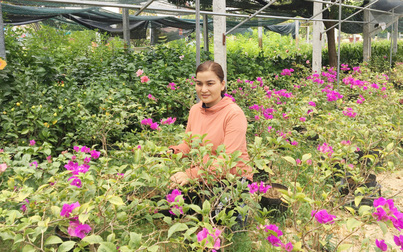 Khởi nghiệp, làm từ thiện từ niềm yêu thích hoa và cây cảnh