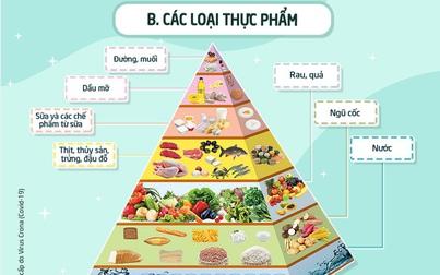 """""""Sổ tay Sức khỏe Covid-19"""" - Phần 3: Dinh dưỡng"""