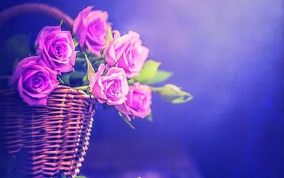 Tìm lại rung động yêu thương thuở ban đầu