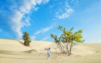 5 đồi cát đẹp nhất miền Trung, bạn đã khám phá hết chưa?