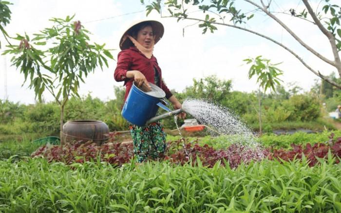 Tăng cường tiếp cận quyền đất đai đối với phụ nữ » Báo Phụ Nữ Việt Nam