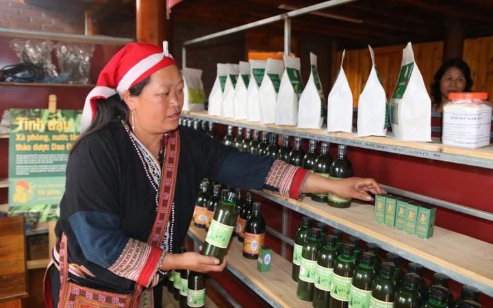 Nữ Giám đốc biến cây thuốc bản địa truyền thống thành cơ hội kinh doanh