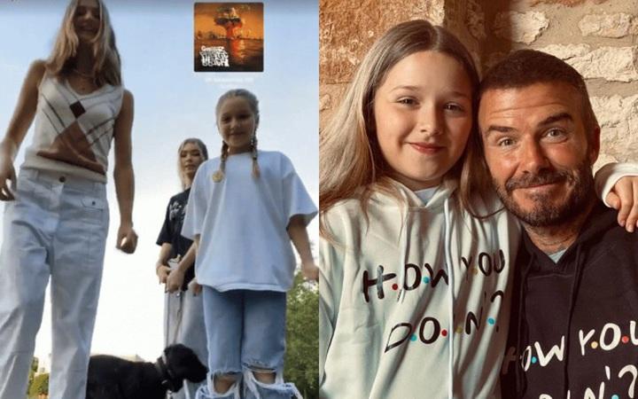 Mới 9 tuổi, Harper Beckham đã phổng phao hơn cả bạn gái của anh trai